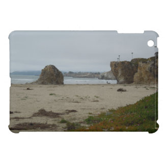 iPad Mini Case: Typical Coastal Scene, Pismo Beach Cover For The iPad Mini