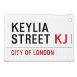 Keylia Street  iPad Mini Cases