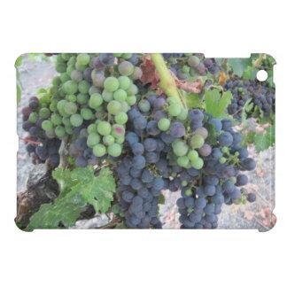 ipad mini: Grapes on the Vine iPad Mini Case