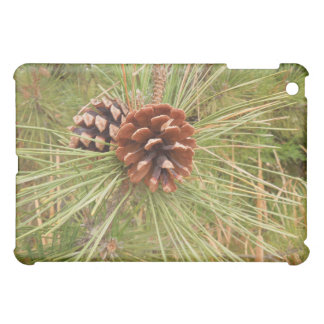 ipad mini: Pine Cones on Tree in Autumn iPad Mini Cover