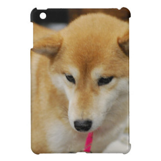 Ipad Mini QPC template iPad Mini Cove - Customized iPad Mini Cases