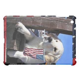 iPad patriótico del chucho