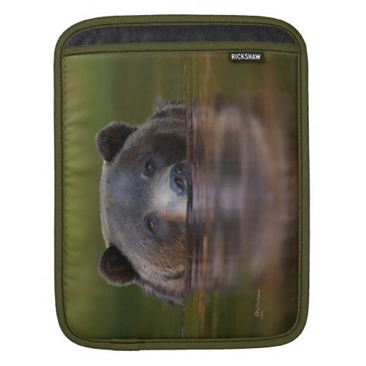 iPad Sleeve, Grizzle in green waters