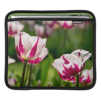 iPad sleeve - Tulip - 02