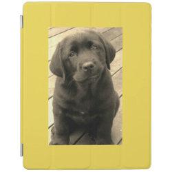 iPad 2/3/4 Cover with Labrador Retriever Phone Cases design