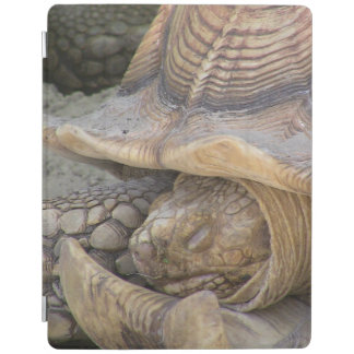 iPad Turtle/Tortus Cover