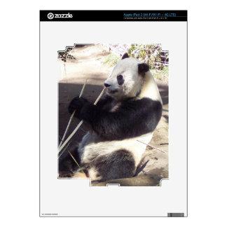 iPanda - iPad 3 skin
