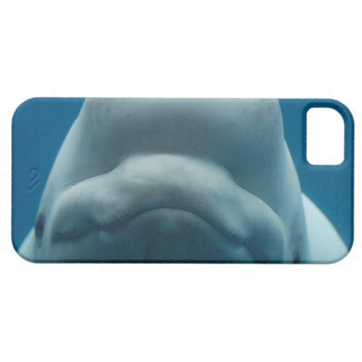iPh de la plantilla del iphone 5 barly allí QPC - iPhone 5 Case-Mate Carcasa