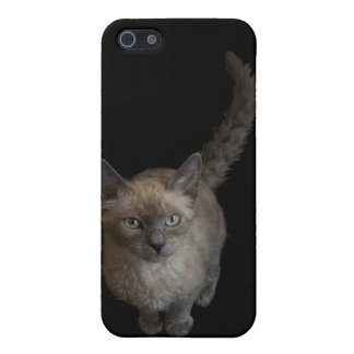 Iphone4 case: LaPerm cat iPhone SE/5/5s Cover