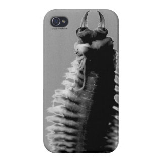 iPhone4 Nereis glossy cover iPhone 4/4S Covers