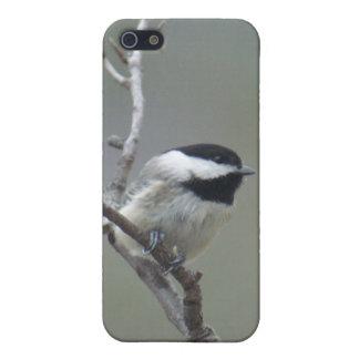 iphone4 speck case