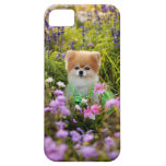 iPhone5 - Bella's Secret Garden iPhone 5 Covers