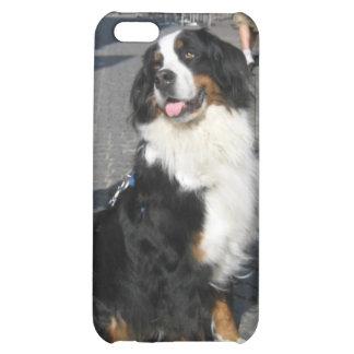 iPhone5 Case: Berner, Fussen Bavaria iPhone 5C Cover