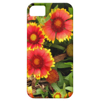 iphone5 case bright red and yellow flower photo
