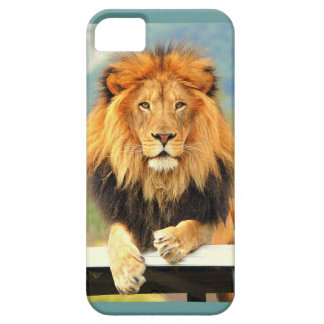 iPhone5 Case Male Lion King of the Jungle