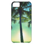 iPhone5 caso - palmas de la Florida