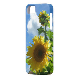 iPhone5 CM/BT - Sunny Sunflower iPhone SE/5/5s Case