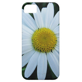 iPhone5 covering white daisy iPhone 5 Covers