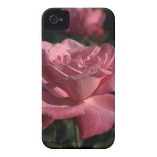 iPhone5 Floral Design iPhone 4 Cover