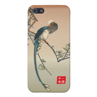 iPhone5 signature series< A catching lot of money  iPhone 5/5S Cover