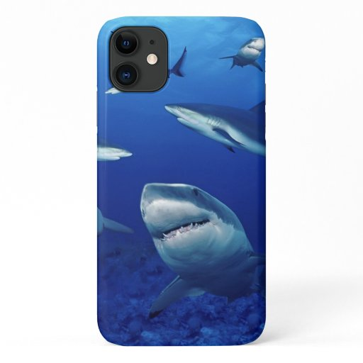 iPhone 11 Case-Sharks  iPhone 11 Case