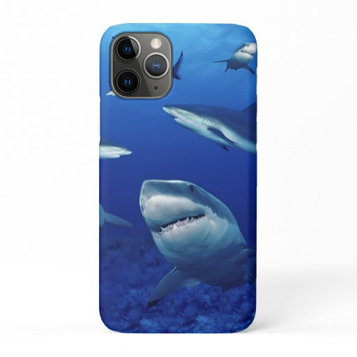 iPhone 11Pro Case-Sharks   iPhone 11 Pro Case