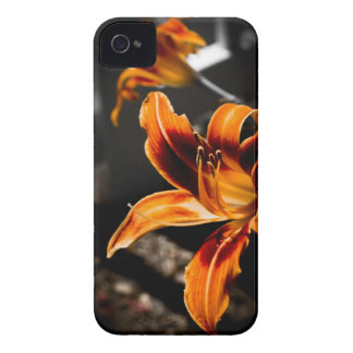 iPhone 4/4s Case - Orange Red Daylily