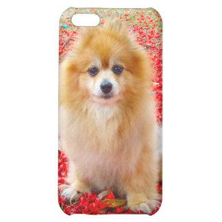iPhone 4 4S el Pomeranian con las flores rojas