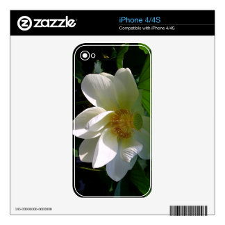 IPhone 4/4S Skin with delicate white Lotus Flower Skin For The iPhone 4S