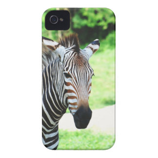 iphone 4 barely there QPC template Ca - Customized Case-Mate iPhone 4 Case
