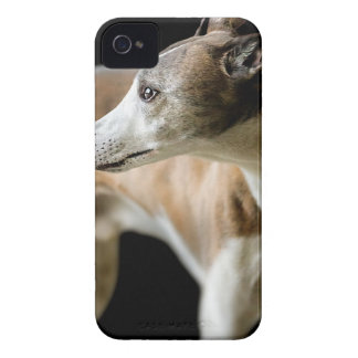 iphone 4 barely there QPC template Ca - Customized iPhone 4 Case-Mate Case