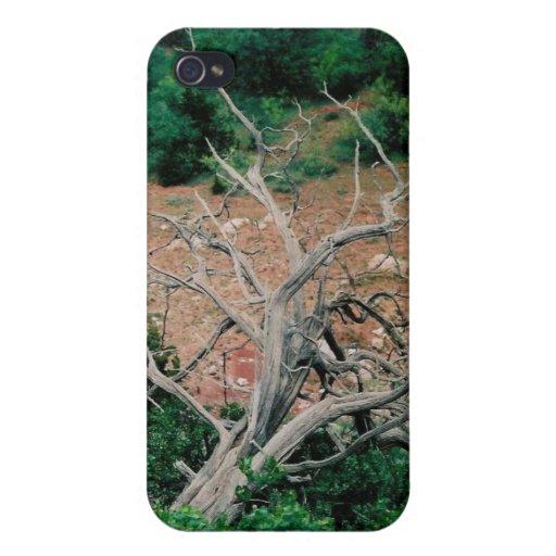 IPhone 4 - Camino del polvo iPhone 4 Cárcasas