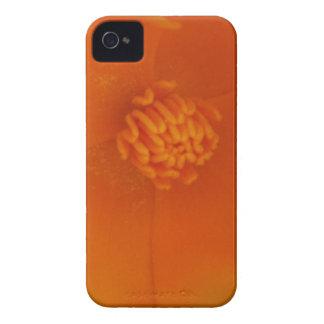 iPhone 4 Case - California Poppy