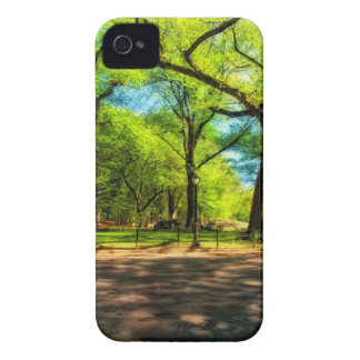 iPhone 4 Case Central Park NYC