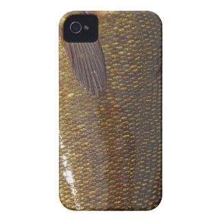 iPhone 4 Case (SMALLMOUTH BASS)