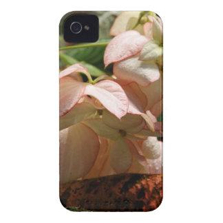 iPhone 4 Case - Strawberry Splash