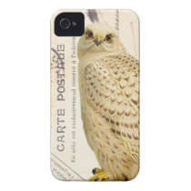 iphone 4 case.. .Vintage White Owl iPhone 4 Cover