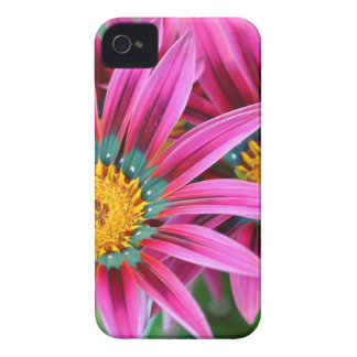 iphone 4 case with colorful flowers