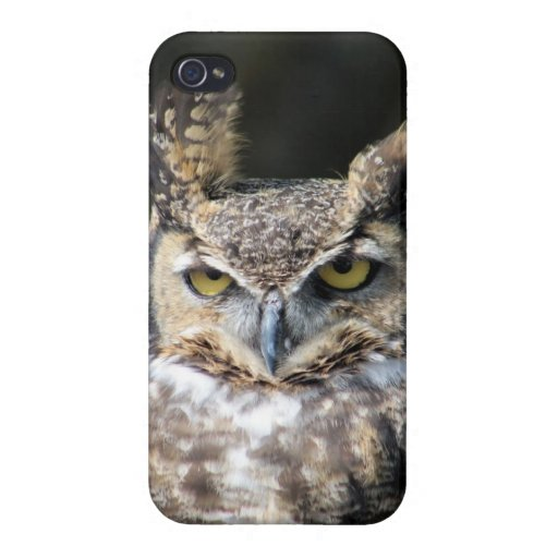 iPhone 4 case with Great-Horned Owl.