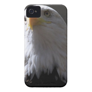 iPhone 4 Case with majestic eagle