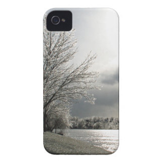 iPhone 4 case with photo of icy winter landscape