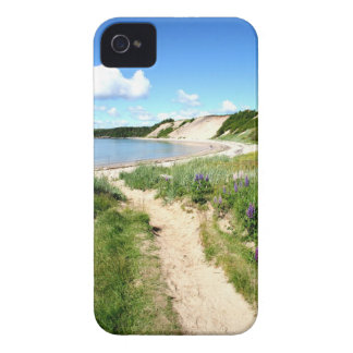 Iphone 4 Case with Sandy Cove Beach