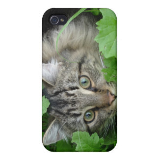 iPhone 4 Cat iPhone 4 Covers