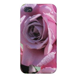 iPhone 4 color de rosa rosados oscuros del caso iPhone 4 Cárcasa