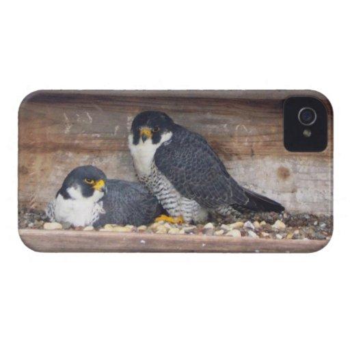 iPhone 4 de la casamata de Mariah y de Kaver Case-Mate iPhone 4 Protector