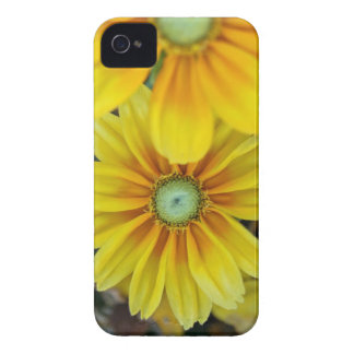 iphone 4, Rudbeckia Case-Mate Barely There Case