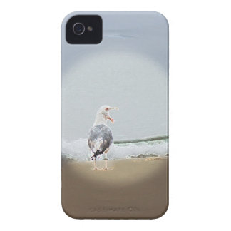 iPhone 4 Screaming Gull Case iPhone 4 Covers