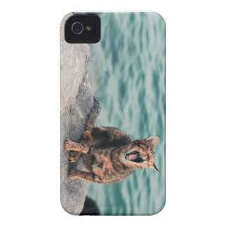 Iphone 4 sleepy cat case - sea animals cute