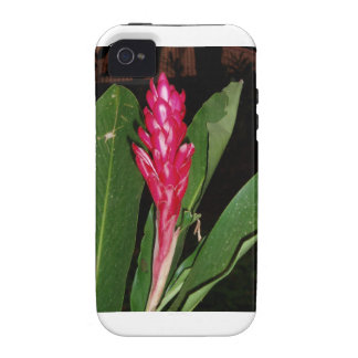 Iphone 4 Vibe QPC template iPhone 4/4 - Customized Vibe iPhone 4 Cover