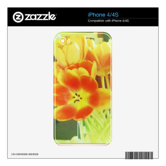 iPhone 4s Skin Floral